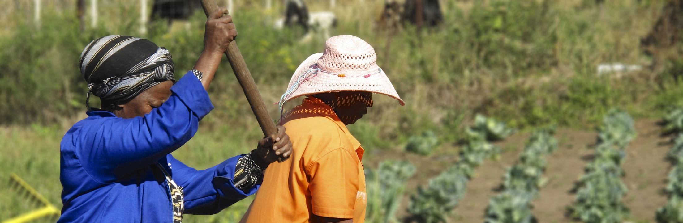 gardening ladies